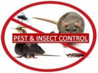 Pest-Insect-Control 200x150